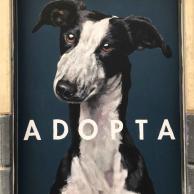 calle_lavapies_adopta2