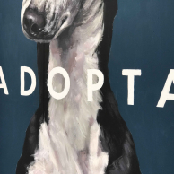 calle_lavapies_adopta5