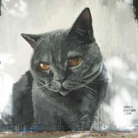 cat_mural