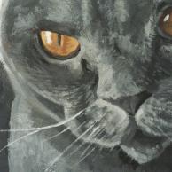detail_cat_mural
